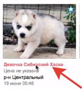Другой пользователь использует мои фотографии в своём объявлении. Что делать?